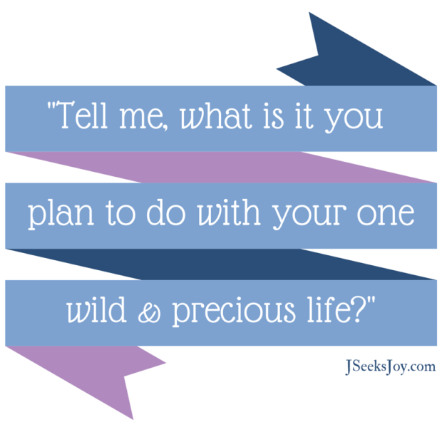 Tell me what is it you plan to do with your one wild and precious life? via J Seeks Joy