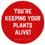 You're keeping your plants alive!