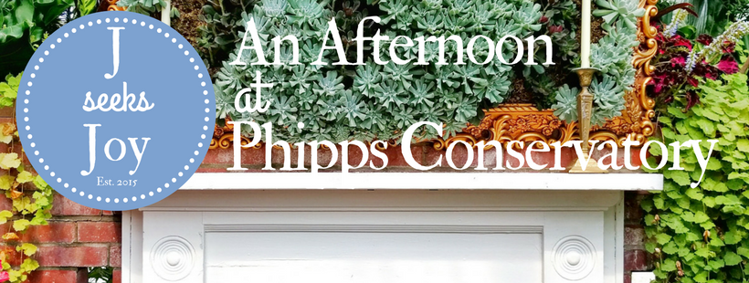 an-afternoon-at-phipps-conservatory